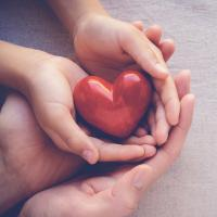 Cupped hands holding a heart shaped object.